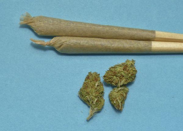 Cannabis: legalizzare sì o no?