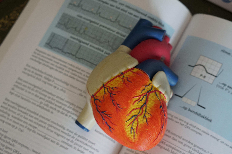 Ipertensione arteriosa e qualità della vita. Quanto conta la psiche?